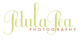 Petula Pea Photography logo